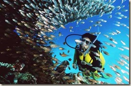 great-barrier-reef-7