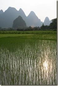 Yangshuo_Sprookjesachtig_platteland